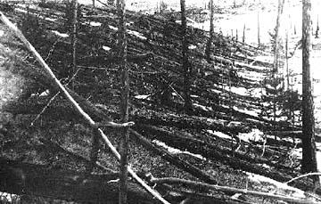 טונגוסקה - אחרי הפיצוץ